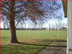 Playing fields as seen from outside P5